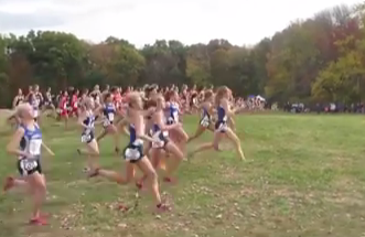 Cross Country Teams Hit Their Stride in States