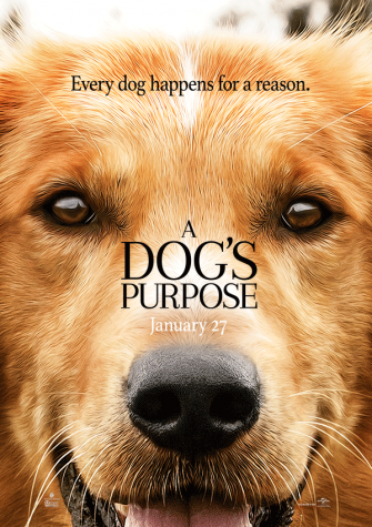 "Sit! Stay! For ""A Dog's Purpose"""