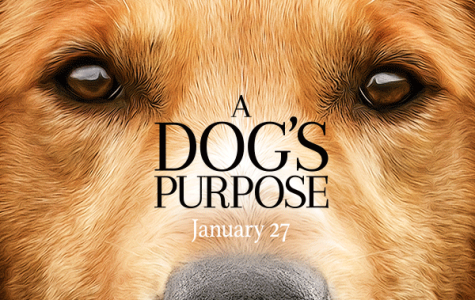 """Sit! Stay! For """"A Dog's Purpose"""""""
