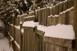 Snow Day Fiasco
