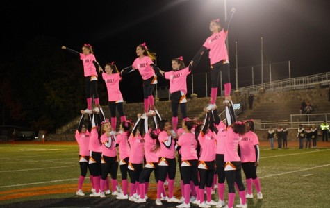 Pink Out: 2k15