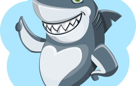 Ask The Shark