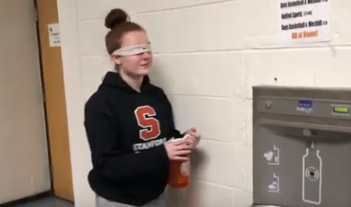 Birdbox Challenge – SHS Edition