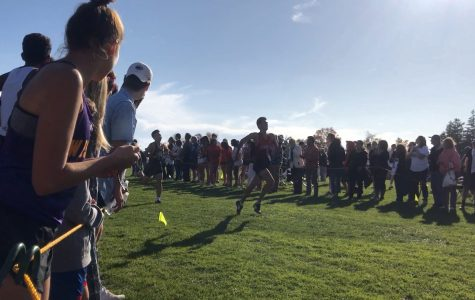 SHS Cross Country Competes in FCIAC Event